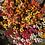 Thumbnail: Nemesia Carnival Mix