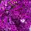 Thumbnail: Cineraria maritima Flowering NM
