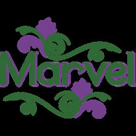 Marvel 1080.png