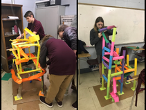 Roller Coaster Physical Science