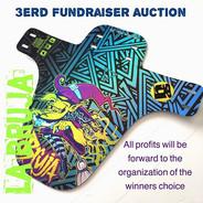 Third auction WAS mudguards