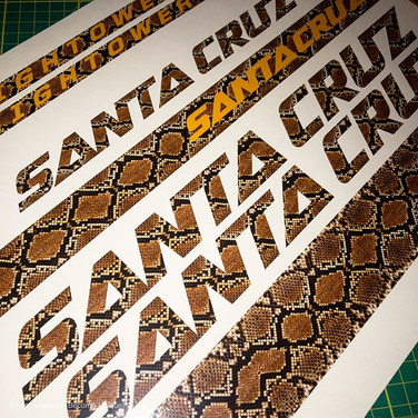SantaCruz Hightower ratlesnake print FRAME DECALS