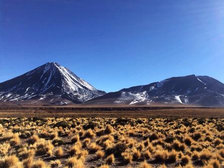 Salar de Tara, Deserto do Atacama