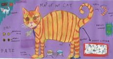 Map of my cat - Sara Fanelli tribute