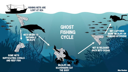 Time to tide up - Fishing debris in Australian oceans