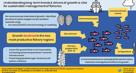 Graphical abstract growth.jpg
