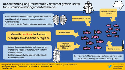 Uncovering long-term growth histories in fishery species