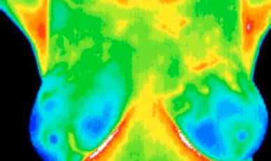 thermography-300x238.jpg