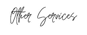 Blink Beauty Logo Final (2).png