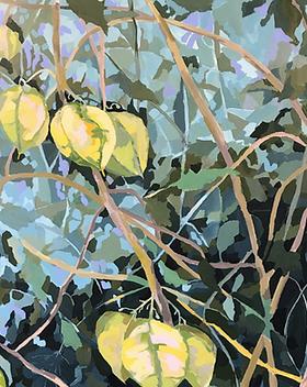 Crop of Bush Lanterns by Leanne Booth.pn