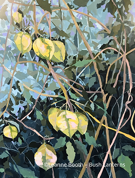 Bush Lanterns by Leanne Booth.png