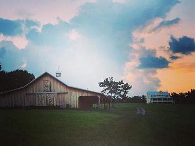Just a little piece of Ashland City Farm