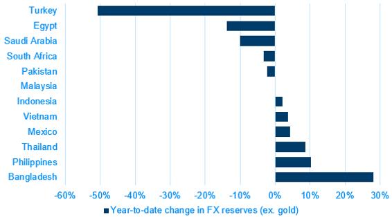 01 YTD FX reserves.PNG