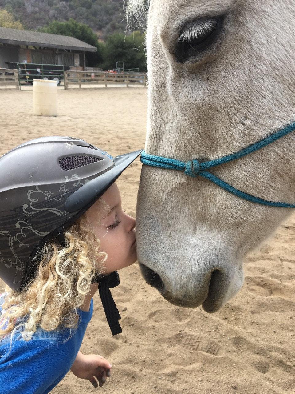 Family Horse Fun