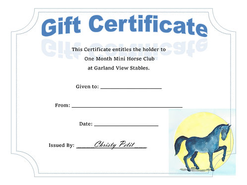 One Month of Mini Horse Club
