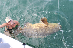 Heather Swims with Grouper