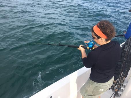 Near Shore Catching