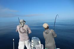 Fishing charter Boca Grande