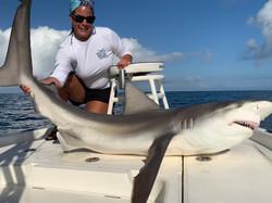 Boca Grande shark fishing