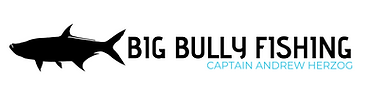 Big Bully Fishing Logo.png