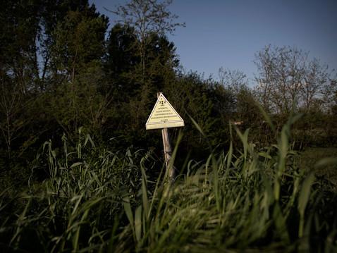 """""""Banned area from being used in agricolture and livestock farming"""". This is one of many signs planted near the Sacco river. ---- """"Area interdetta all'uso agricolo e zootecnico"""" è la frase riportata sui tanti cartelli di divieto posizionati nei pressi del fiume Sacco."""
