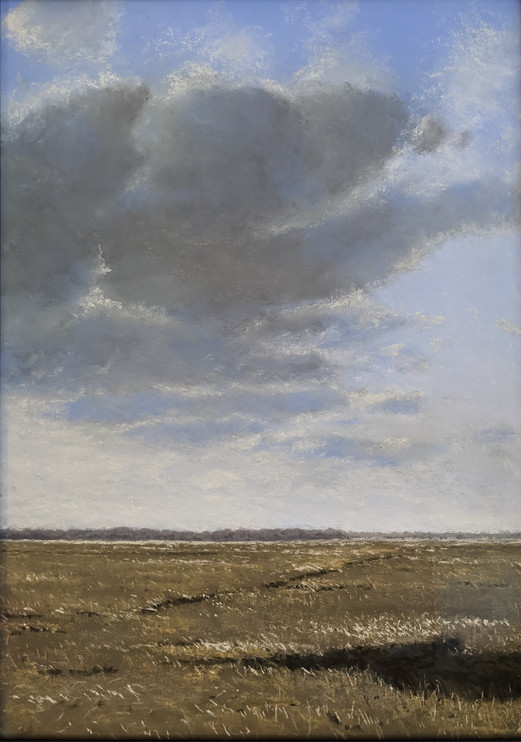 CLOUDS OVER THE MARSH