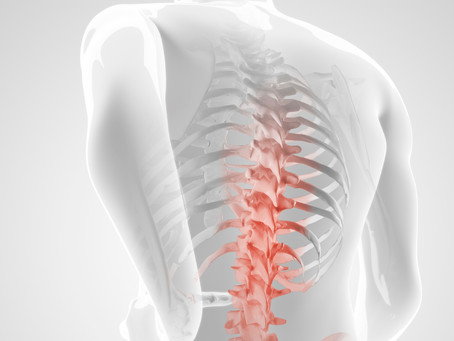 Pilates for Low Back Pain