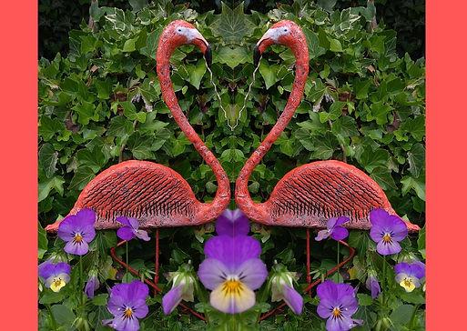 Flamingo twin.jpg