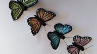 vlinders gedraaid.jpg