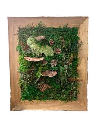 11x14 Moss Frame