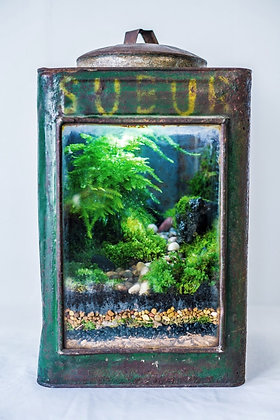Vintage Enclosed Terrarium