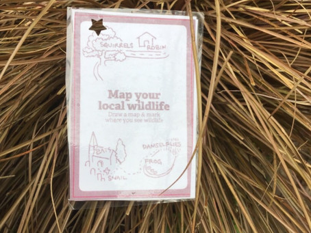 Map Your Local Wildlife