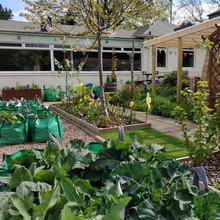 Arbor Green Nursery Garden
