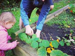 Community Garden Project