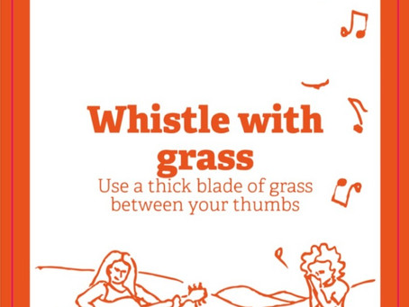 Whistle With Grass