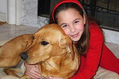 Sam-Lucy-labrador.jpg