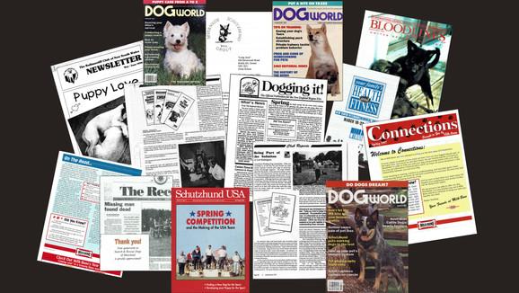 Internationally published articles