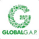 global_GAP.png