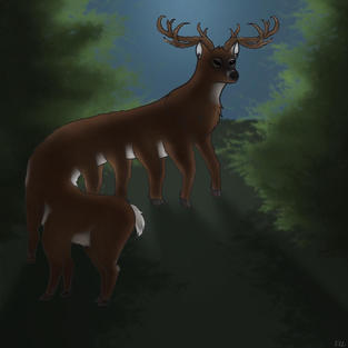Long Deer