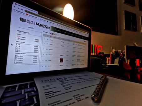¿Es correcto el registro de AMLO como marca?