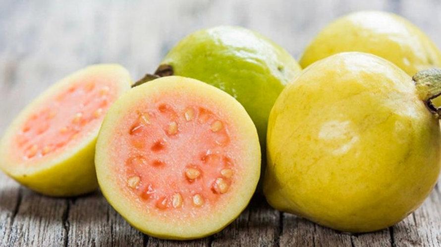 Maui guava 5 fresh cuttings easy to grow.