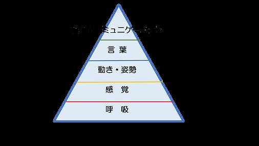 発達ピラミッド.png