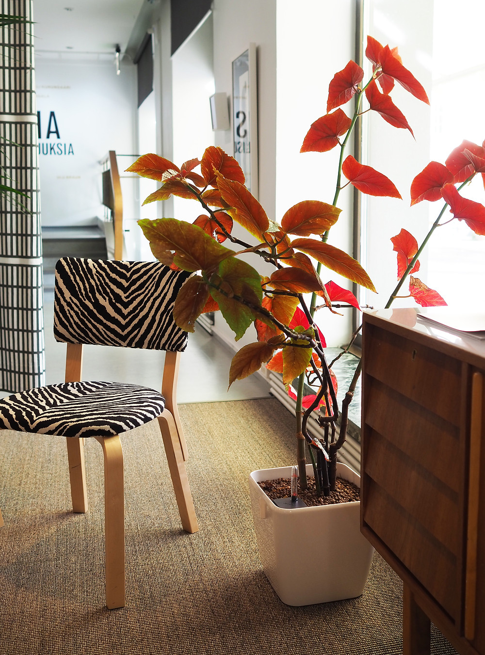 Jyväskylän taidemuseo Aalto-lounge