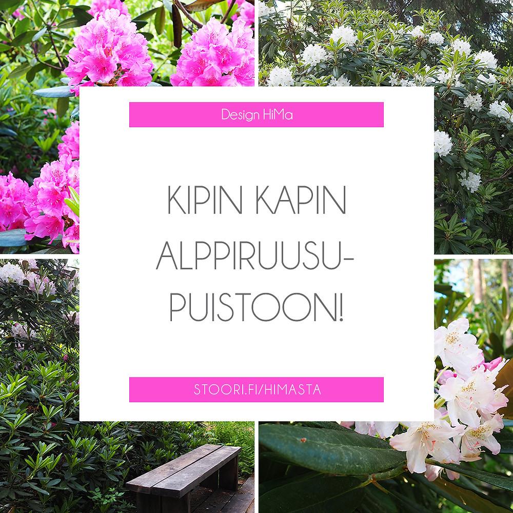 alppiruusupuisto Jyväskylä