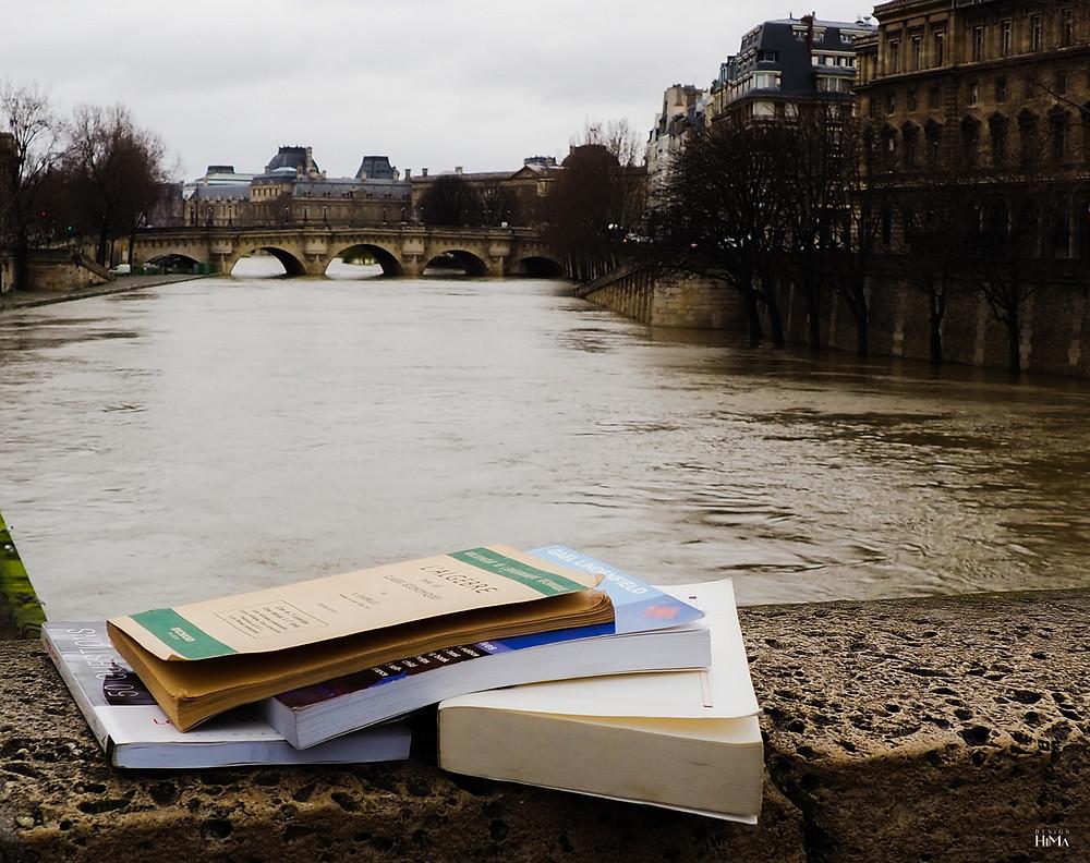Pariisi Seine kirjat sillalla