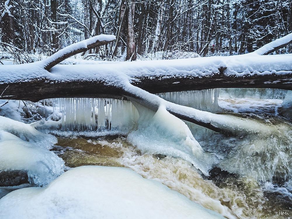 Talvinen Rutakoski