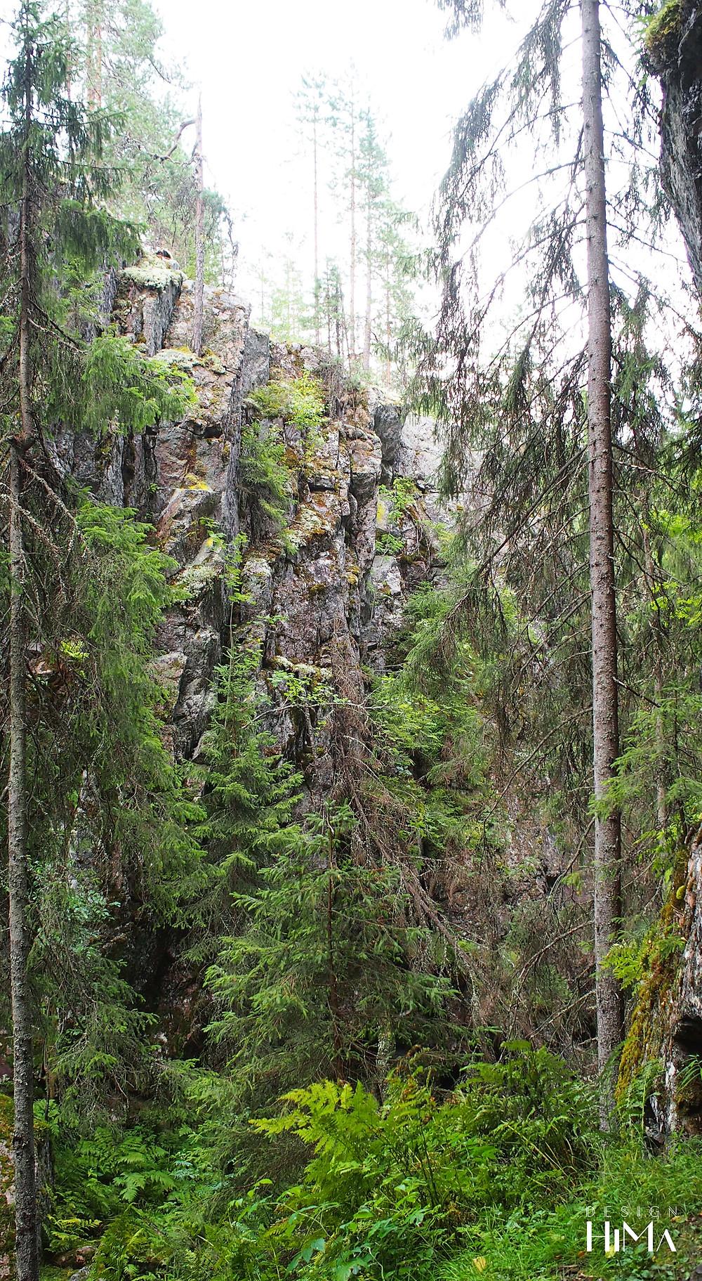 Hitonhauta kallio