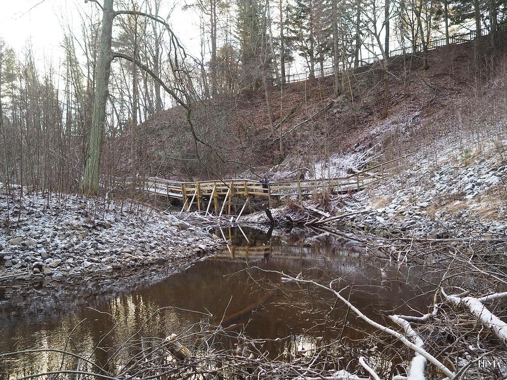 Tourujoen luontopolku Jyväskylä