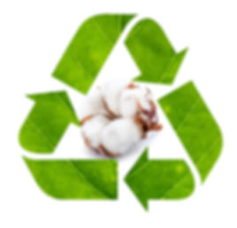 Recycle sign made of green leaf isolated