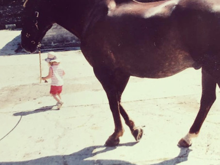 The horse that started all of this....